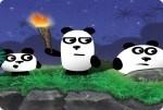 3 pandas dans la nuit
