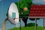 Marque des paniers de basket