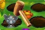 Sissi, la terreur des souris