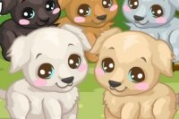 Soigner le Labrador