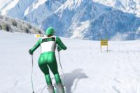 Slalom de Ski